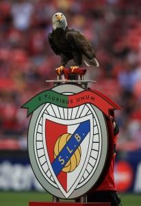 Águia pousa sobre o escudo do Benfica antes de jogo no Estádio da Luz