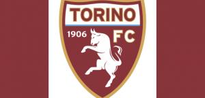 03_12_torino