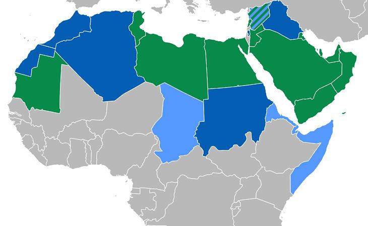 Em verde os países onde o árabe é a única língua oficial; em azul escuro onde é uma língua co-oficial, sendo a mais falada; em azul claro, onde é co-oficial, porém, minoritário (Foto: Reprodução)
